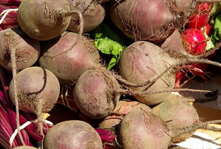 ロシア料理に欠かせない珍しい野菜【ビーツ】の育て方