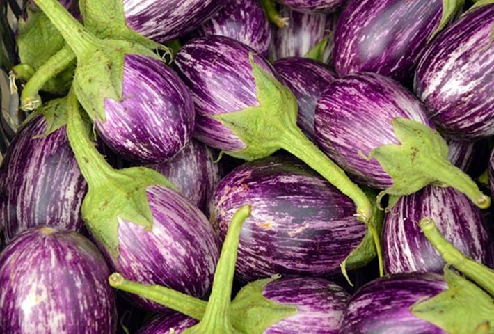 珍しい柄の野菜で食卓を彩ろう【ゼブラナス】の育て方