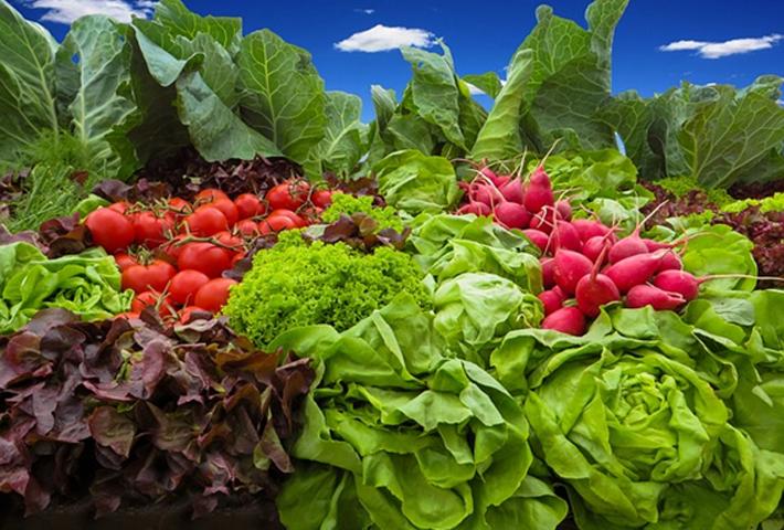 美味しい野菜の育て方