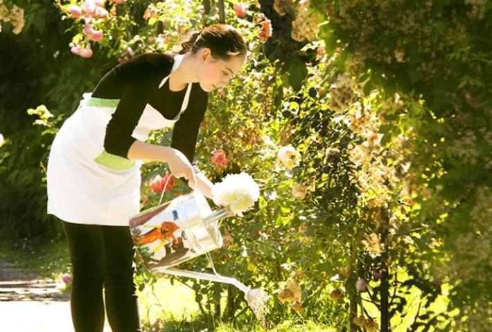 初心者でもできる!液体肥料の家庭菜園での効果的な使い方は?