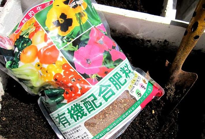 観葉植物に与える肥料の種類