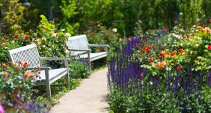 初心者必見!花の植え込み手順と注意点