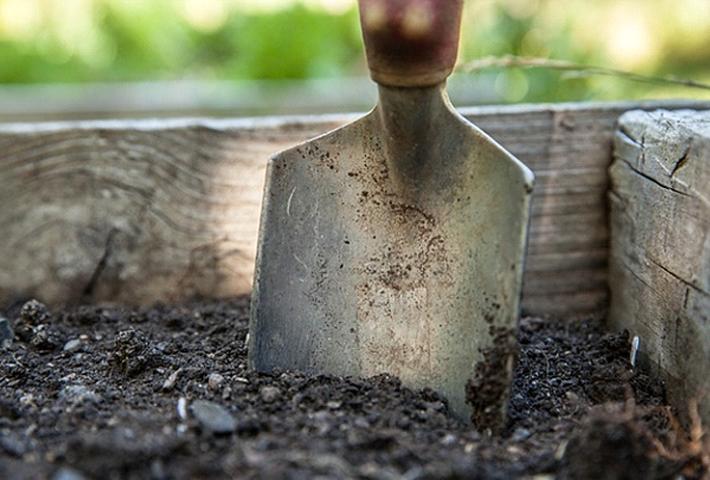 プランターで植物を育てる際に用意するもの
