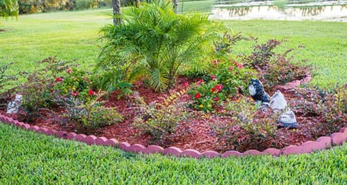 庭のガーデニングに発生する困り者の害虫対策