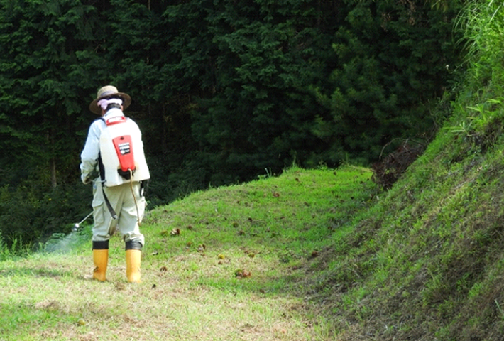 雑草対策はなんだかんだで、除草剤が手っ取り早い!
