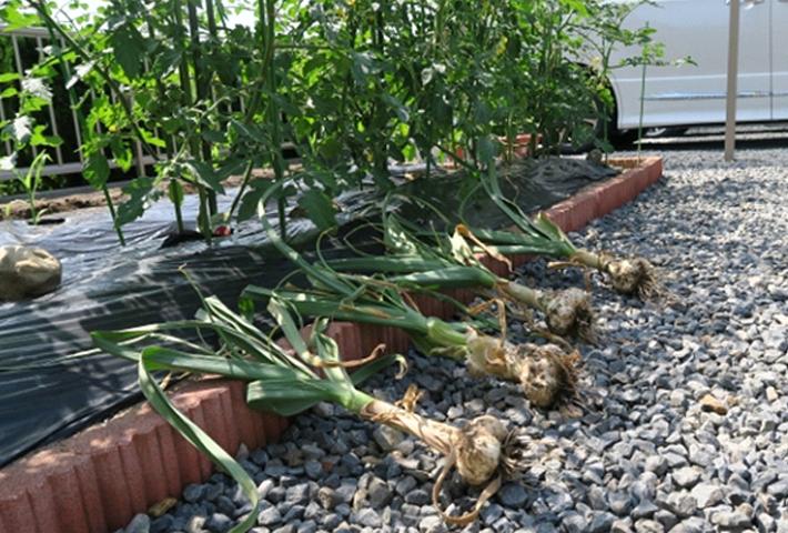 おしゃれに雑草対策する方法?