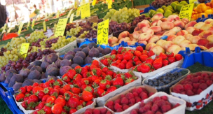 家庭菜園で育てられる果物 人気ランキング5
