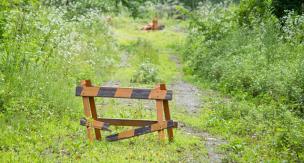 ガーデニングの悩みを解決! おすすめの雑草対策をご紹介