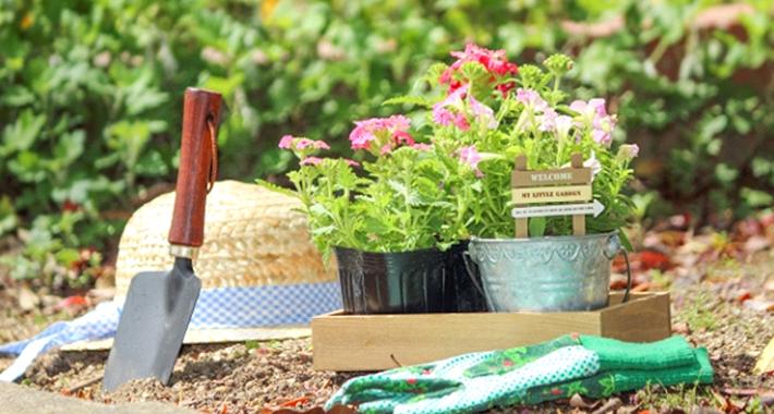 初心者でも簡単に作ることができる! おすすめの花壇の作り方