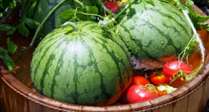 家庭菜園で作る!スイカの育て方をご紹介。