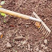 雑草対策1 春のうちから対策を