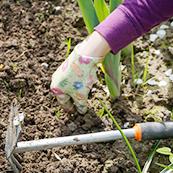 雑草対策2、除草剤の散布