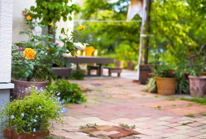 庭の台風対策②グッズや鉢物