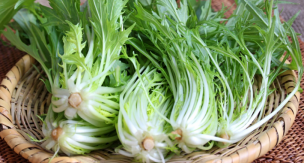 家庭菜園で作る!水菜の育て方をご紹介します