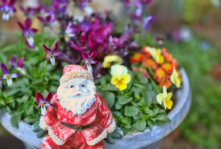 クリスマスの寄せ植えにおすすめのグッズ