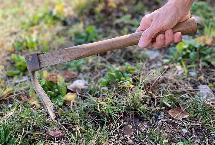 家庭菜園の土作りのやり方は?