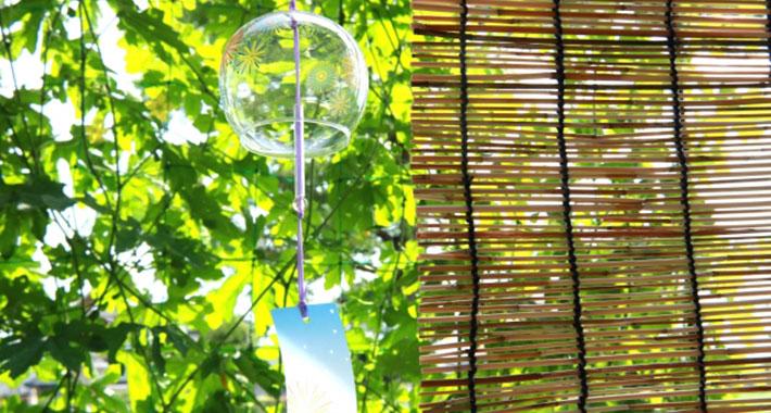 部屋の暑さ対策はエアコンだけじゃない!今年の夏はおしゃれで快適なグリーンカーテンで