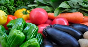 家庭菜園で無農薬は難しい?薬を使わない害虫駆除の方法をご紹介