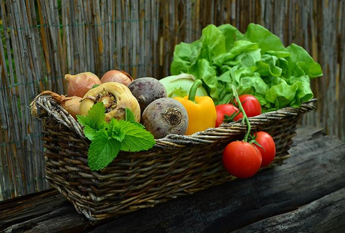 野菜くずで再生栽培がしやすい野菜は?