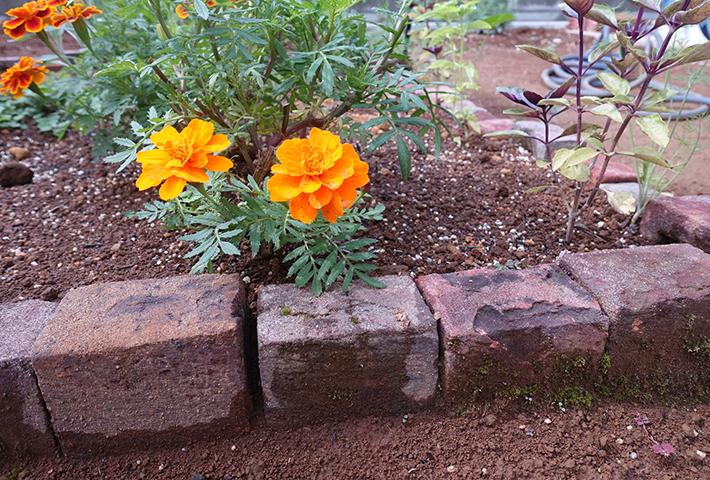 簡単花壇の作り方
