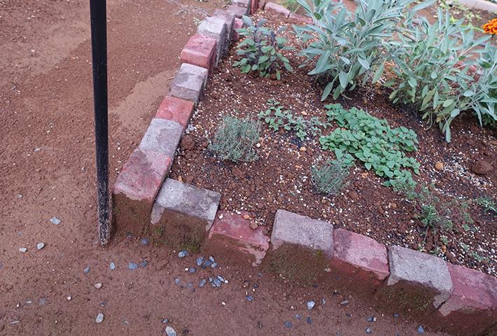 簡単花壇その2 レンガを縦にうめる作り方