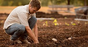 家庭菜園で難しい野菜の種類と野菜作りのコツをご紹介!