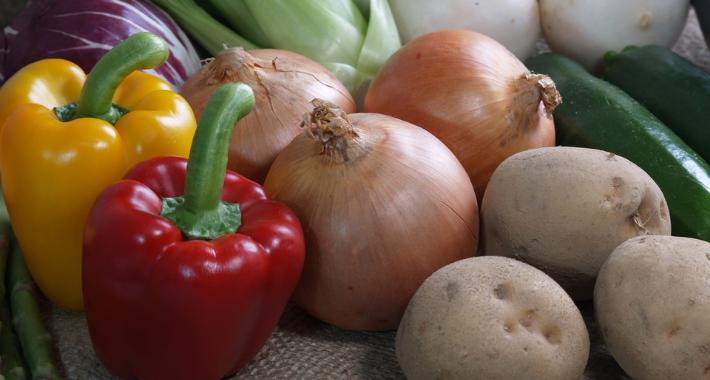 家庭菜園での連作障害を回避!対策と植える時期を紹介