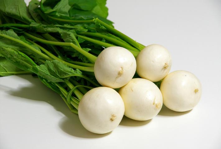 植える時期:1年以上休むべき野菜
