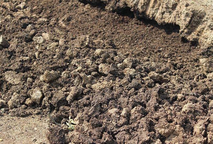 家庭菜園で化成肥料って使っていいの?