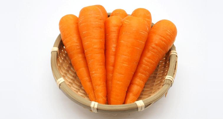 家庭菜園でおすすめの秋に収穫できる野菜4選!