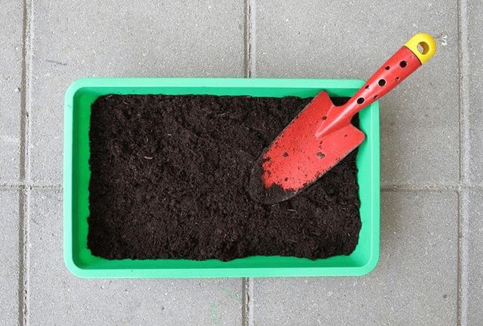 家庭菜園でおすすめの肥料を紹介!